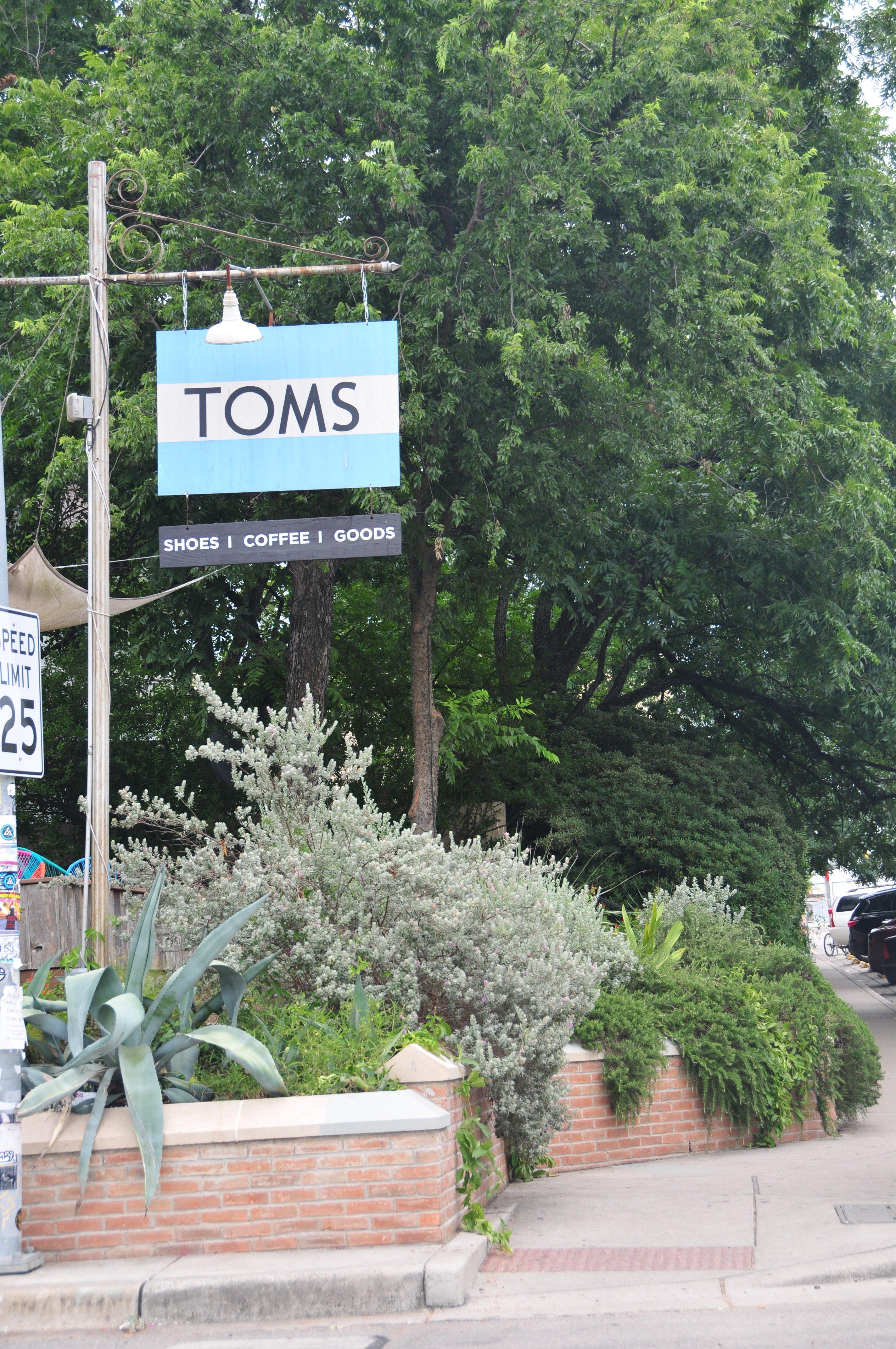 toms 1